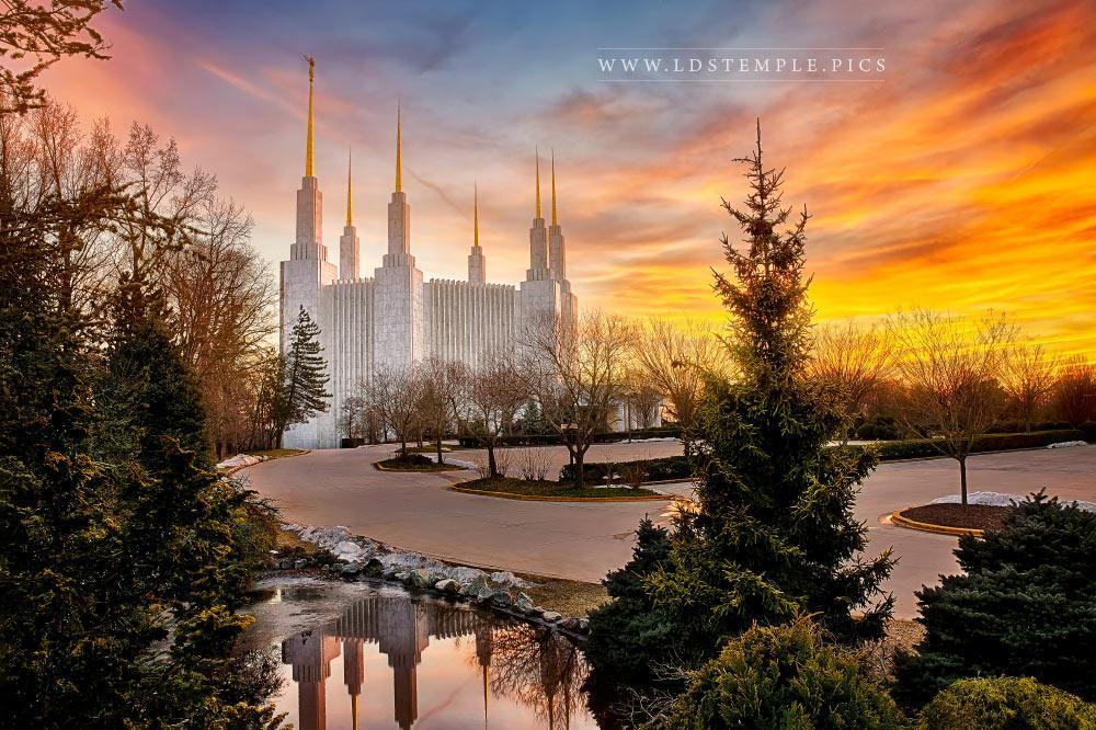Washington Dc Temple Winter Sunset Lds Temple Pictures