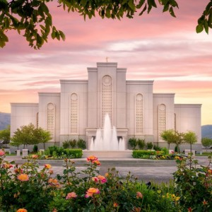 albuquerque-temple-morning-rose