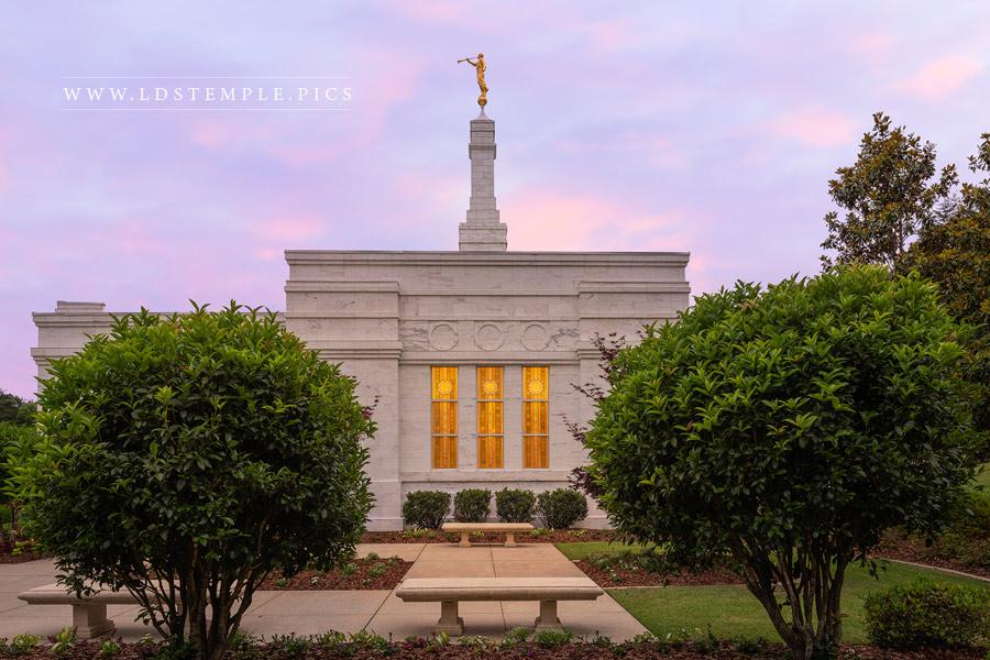 Birmingham Alabama Temple Windows Print