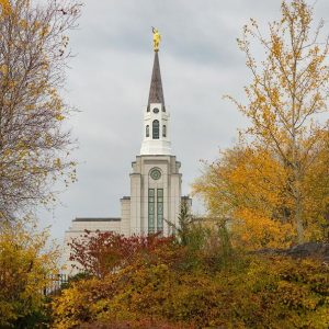 boston-temple-autumn-leaves