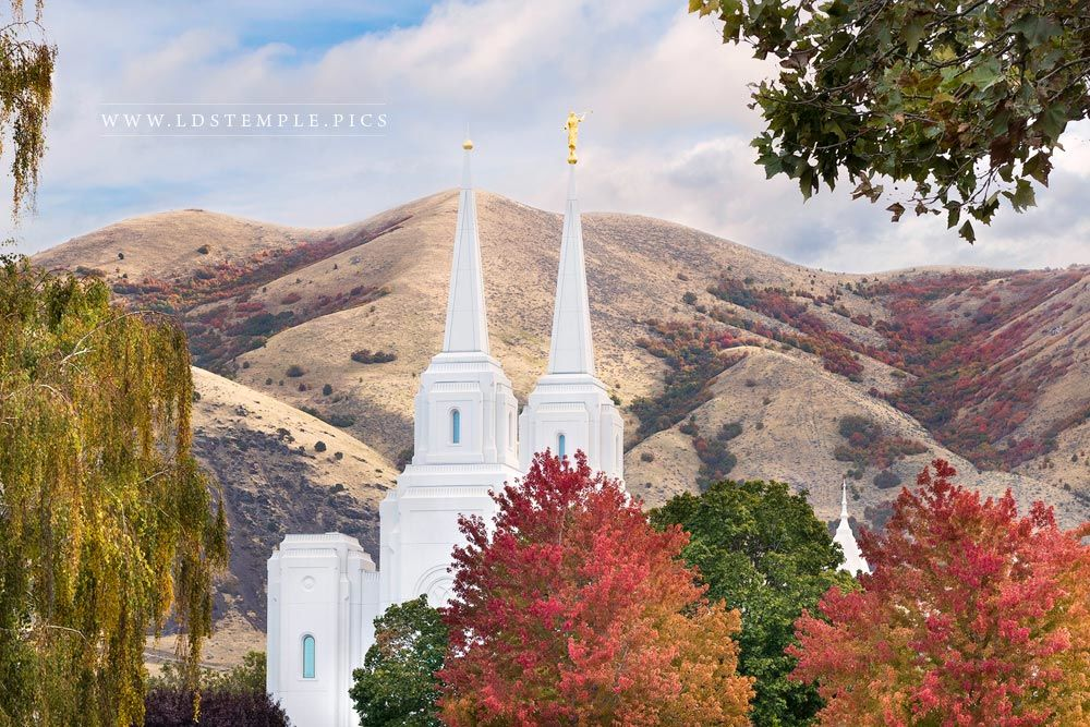 Brigham City Temple Fall Leaves Print