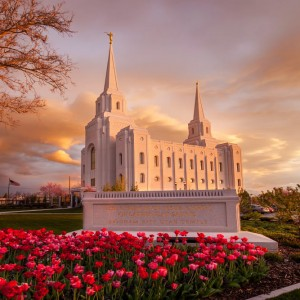 brigham-city-temple-last-light