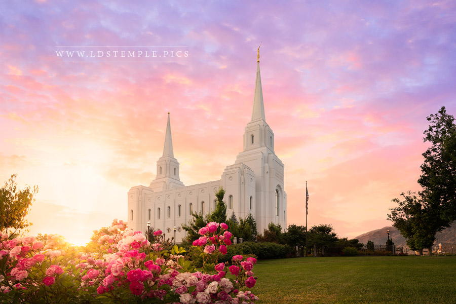 Brigham City Temple Spring Print