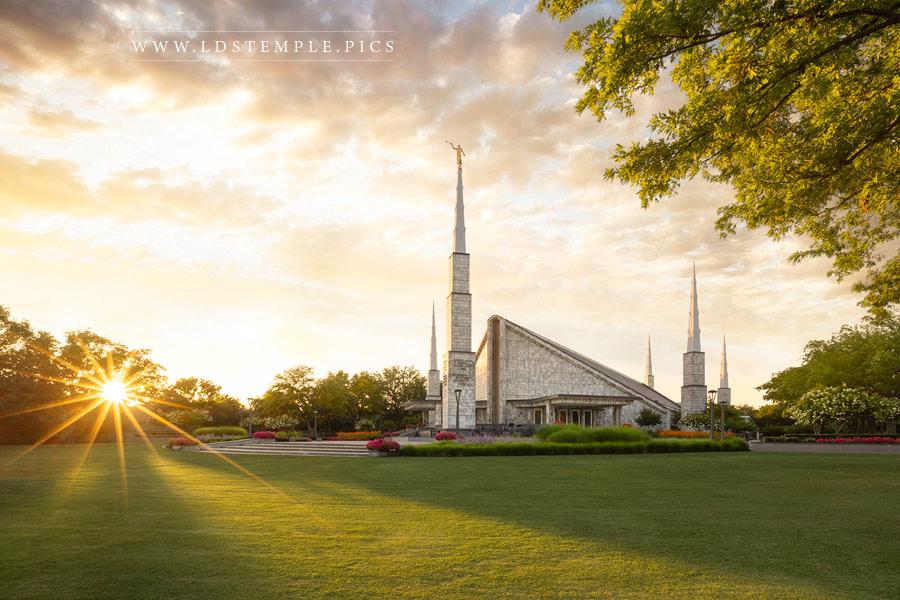 Dallas Temple Radiance Print