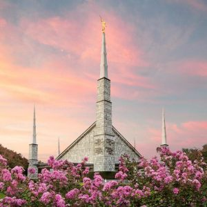 dallas-temple-sunset-and-flowers-updated