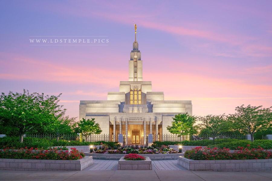 Draper Temple Seed of Faith Print