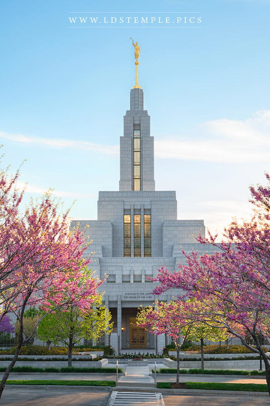 Draper Temple Spring Afternoon Print