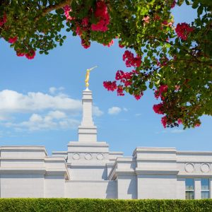 fresno-temple-daytime-flowers