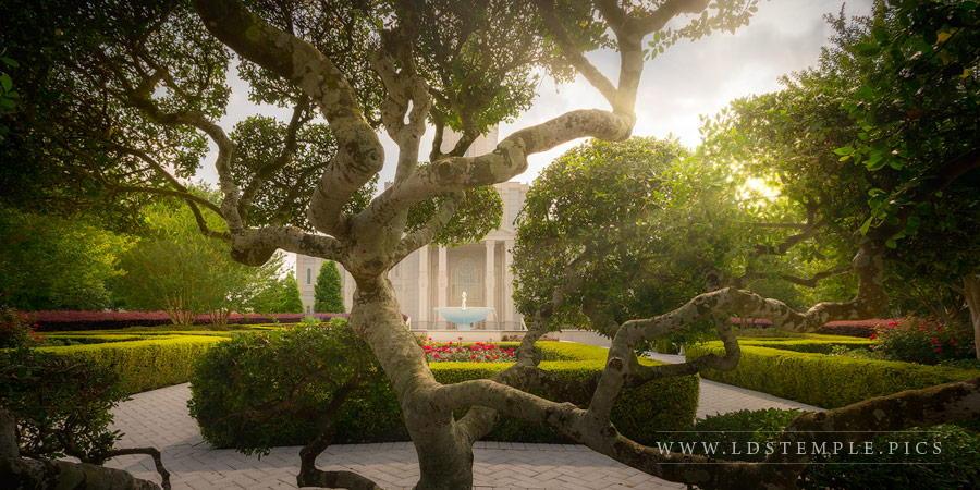 Houston Temple Fountain Gardens Print