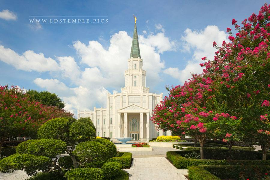 Houston Temple Morning In The Gardens Print