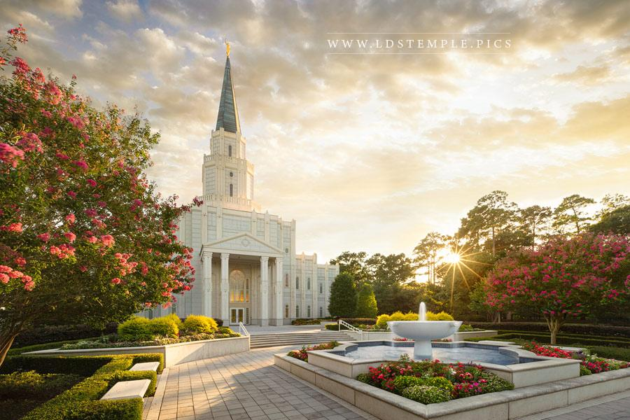 Houston Temple Radiance Print
