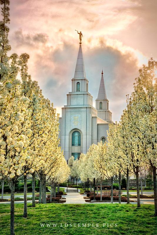 Kansas City Temple Abiding Peace Print