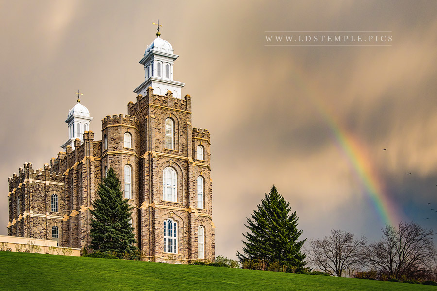 Logan Temple Spring Rainbow Print