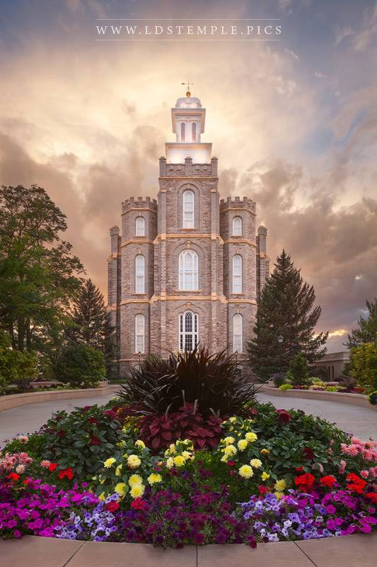 Logan Temple Summer Flowers Print