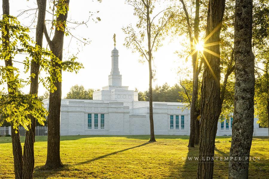 Louisville Temple – Morning Light