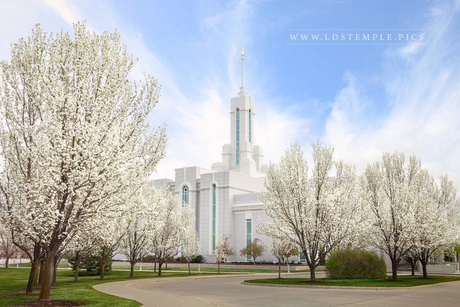 Mount Timpanogos Temple Spring Afternoon Print