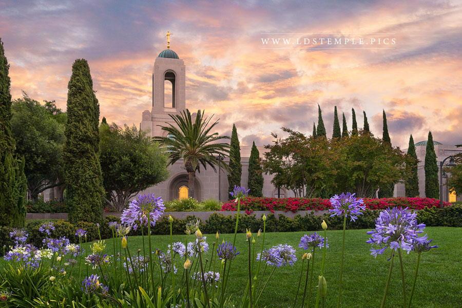 Newport Beach Temple Summer Flowers Print
