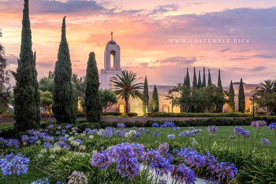 Newport Beach Temple Flower Pathway Print