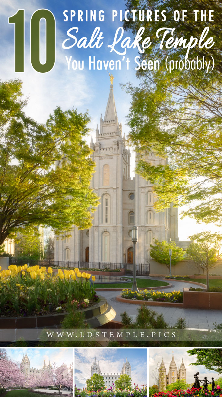10 Spring Pictures of the Salt Lake Temple You Haven't Seen Yet | The iconic & historic Salt Lake Temple closes at the end of this year for four years, so we wanted to share 10 spring pictures of the temple with you!