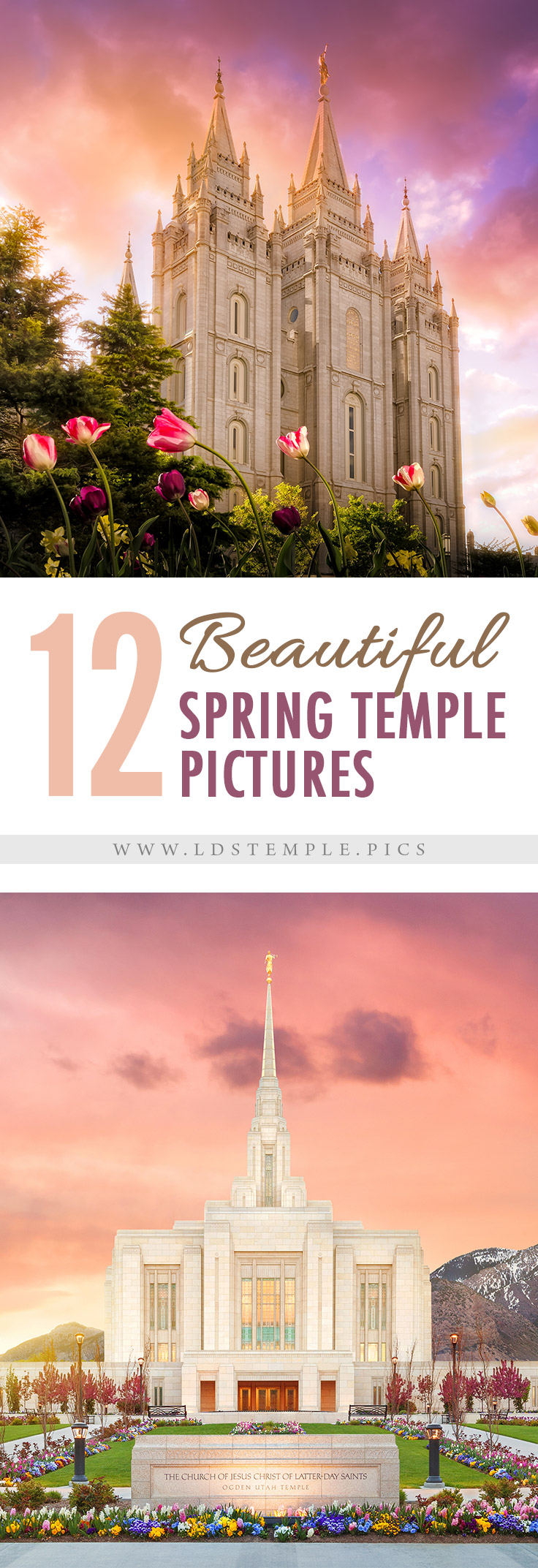 12 Stunning Spring Temple Pictures Lds Temple Pictures