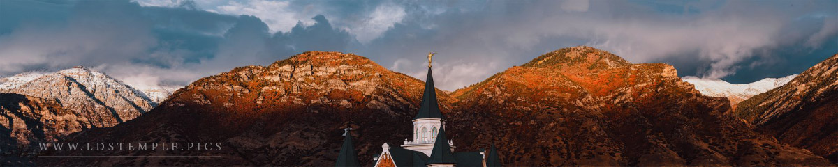 Provo City Center Temple by Taylor Yardley