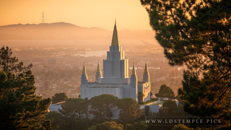 The Oakland California Temple by Alan Fullmer