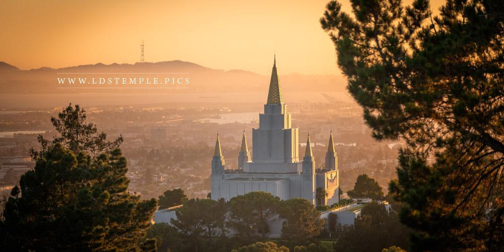 Oakland Temple – Golden Light