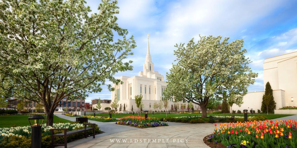 Ogden Temple Spring Pathway Panoramic Print