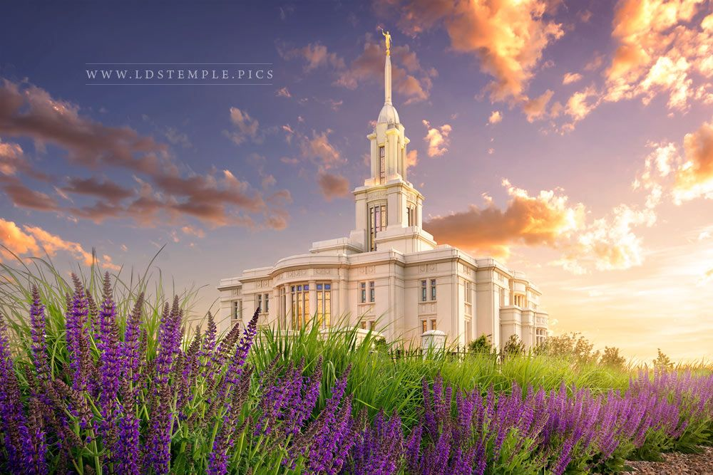 Payson Temple Spring Flowers Print