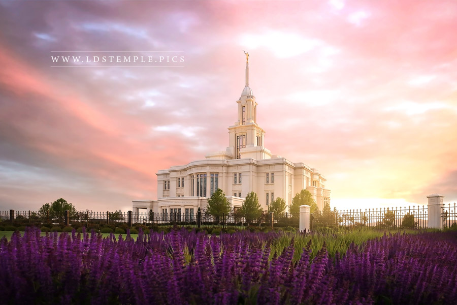 Payson Temple Spring Sunset Print