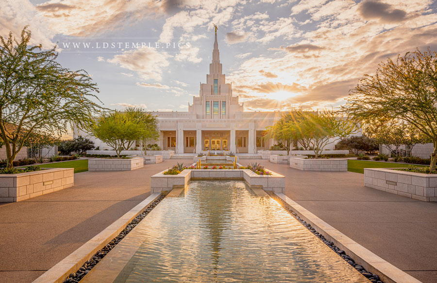 Phoenix Temple Golden Reflections Print