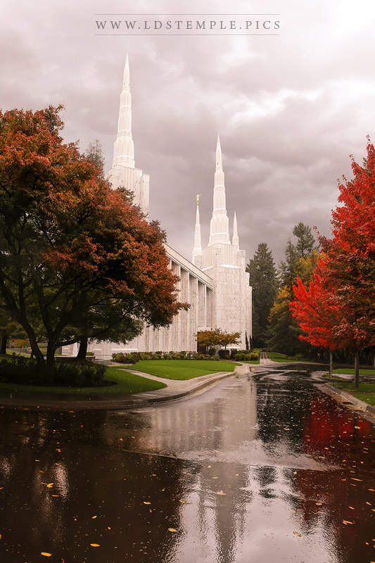 Portland Temple Autumn Reflections Print
