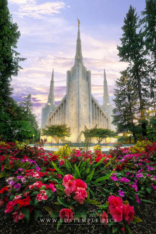 Portland Temple Blossoms Eternal Print