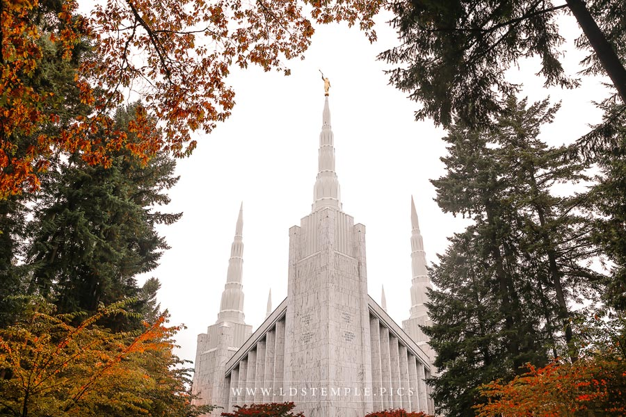 Portland Temple Colors Of Autumn Print