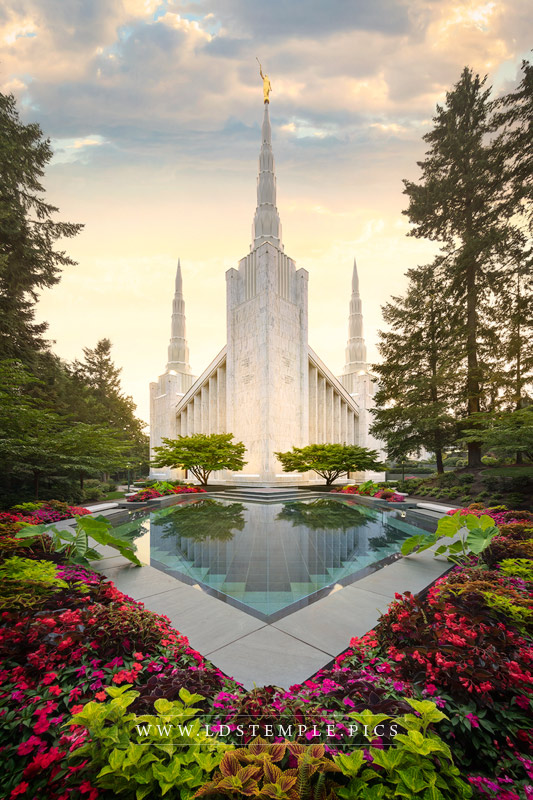 Portland Temple Golden Light Print