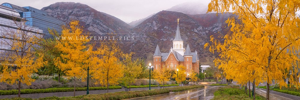 Provo City Center Temple Fall Morning Print