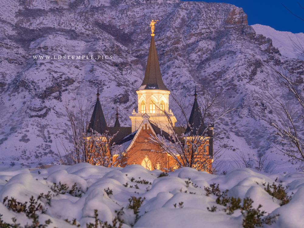 Provo City Center Temple Snow on Snow Print