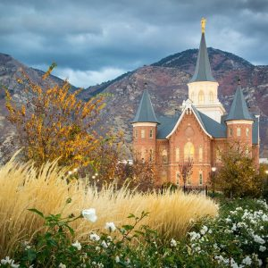 provo-city-center-temple-white-roses
