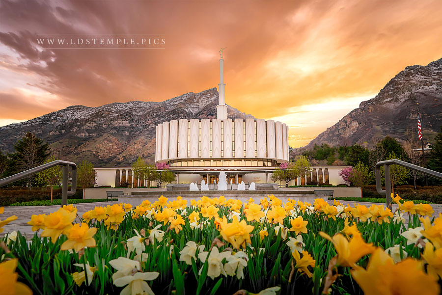 Provo Temple Golden Sunrise Print