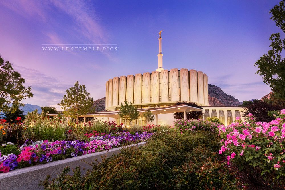 Provo Temple Summer Flowers Twilight Print
