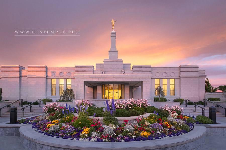 Reno Temple Summer Glow Print