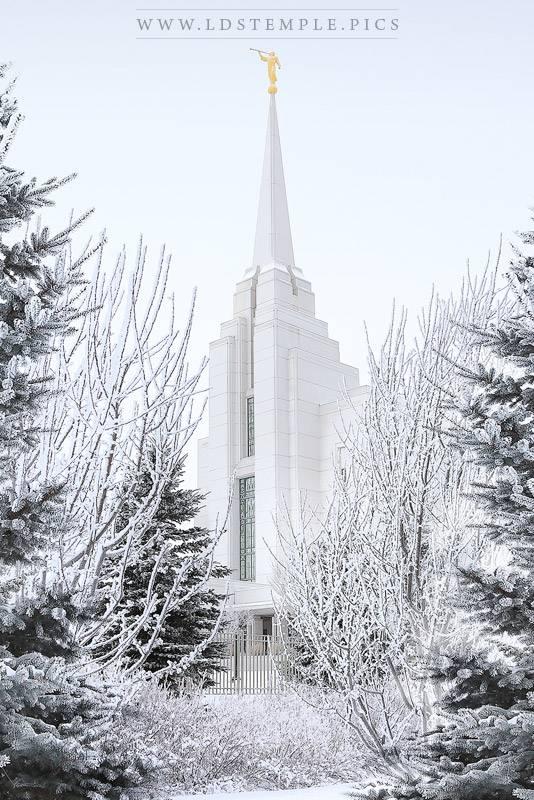 Rexburg Temple Draped In White Print