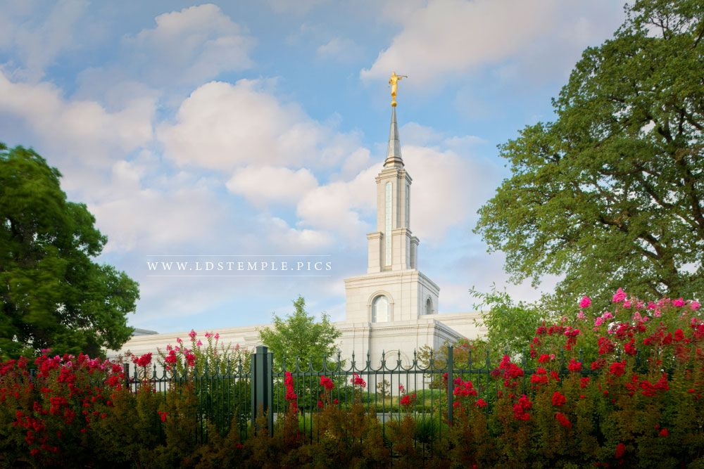 Sacramento Temple – Flowers