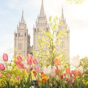 salt-lake-temple-afternoon-glow