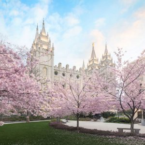 salt-lake-temple-april-blossoms