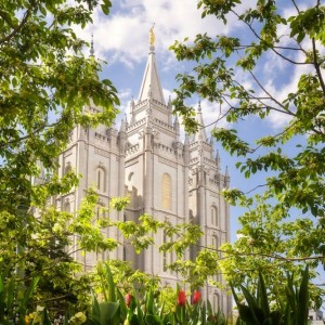salt-lake-temple-glimpse-of-eternity