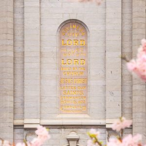 salt-lake-temple-plaque-and-blossoms
