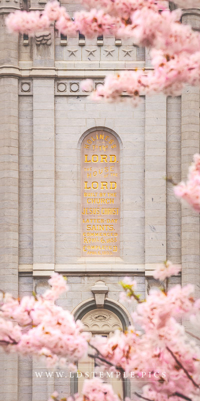 Salt Lake Temple Plaque & Blossoms Print