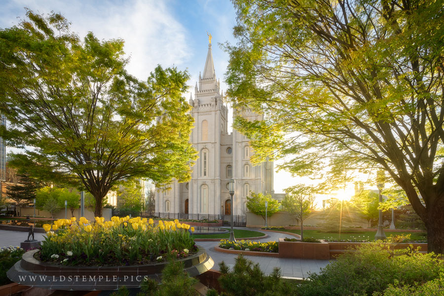 Salt Lake Temple Spring Colors Print