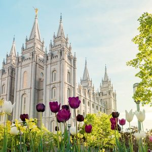 salt-lake-temple-spring-flowers